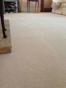Carpet Protection London