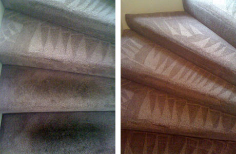 Easy Errors of an Inexperienced Carpet Cleaner