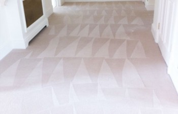 Carpet Stain Removal Enfield